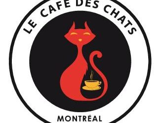 Si vous aimez le café et les chats…vous serez heureux avec une franchise Le Café des Chats!