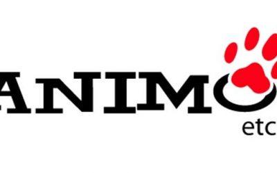 Animo Etc – Une franchise à l'avant-garde!